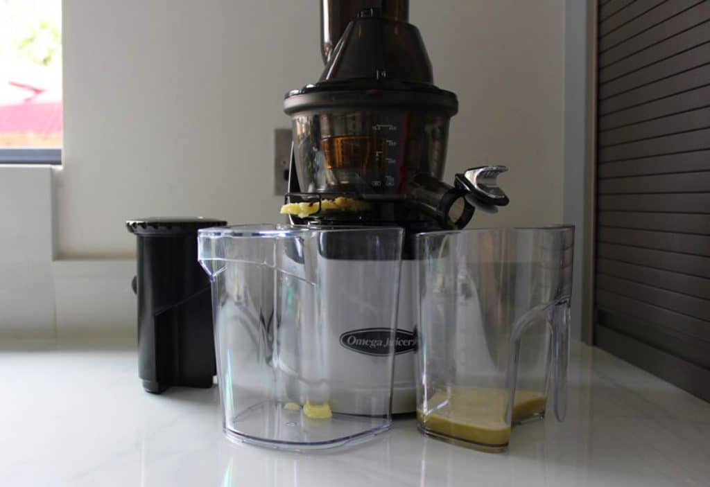 5 Best Omega Juicers - Great Juicers From the Top Producer in the Industry!